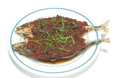 Fried stiff tail fish with chili paste. Fried stiff tail fish with chili paste isolated Stock Images