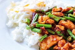 Fried stir chicken with red curry paste. Close up shot Fried stir chicken with red curry paste add yard long bean pour rice Royalty Free Stock Images