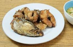 Fried Striped Snakehead Fish profond avec de la sauce aigre épicée images libres de droits