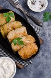 Fried stuffed cabbage royalty free stock photography