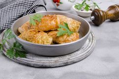 Fried stuffed cabbage royalty free stock image