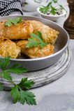 Fried stuffed cabbage royalty free stock photo