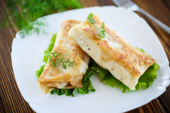 Fried stuffed spring rolls on a plate Royalty Free Stock Image