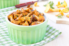 Fried summer golden chanterelle mushrooms with herbs in cup Royalty Free Stock Images