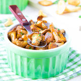 Fried summer golden chanterelle mushrooms with herbs in cup Stock Photos