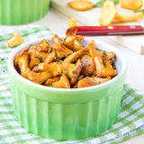 Fried summer golden chanterelle mushrooms with herbs in cup Stock Images