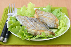 Fried swordfish on lettuce Stock Images