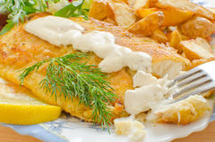 Fried tilapia and aioli sauce Royalty Free Stock Photography