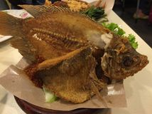 Fried Tilapia Royalty Free Stock Image