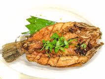 Fried Tilapia. Fish Stock Image