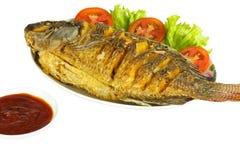 Fried Tilapia fish. Royalty Free Stock Photography