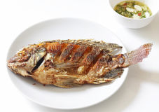 Fried Tilapia fish fried. On white table stock photography