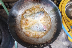 Fried tilapia fish in a frying pan Royalty Free Stock Photography