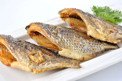 Fried Tilapia fish on plate with white Stock Photography