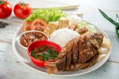 Fried tilapia fish and rice stock photography