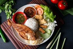 Fried tilapia fish and rice stock image