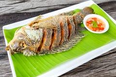 Fried  tilapia fish Stock Images
