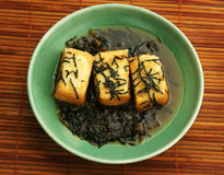 Fried Tofu. With algae in a green bowl Studio shot Royalty Free Stock Photography