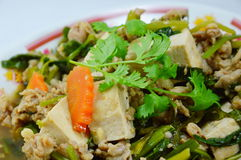 Fried tofu with minced pork Royalty Free Stock Photo