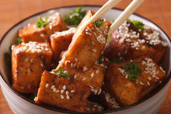 Fried tofu with sesame seeds in a bowl macro. horizontal Stock Photos