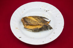 Fried Trichogaster pectoralis på maträtten, stekt thai foo för salidfisk Arkivfoton