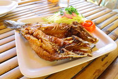 Fried  triped bass with fish sauce Royalty Free Stock Photos