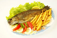 Fried trout Stock Photos