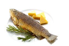 Fried trout Royalty Free Stock Images