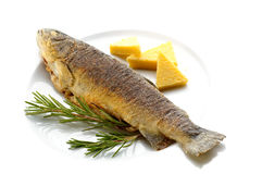 Fried trout Royalty Free Stock Photo