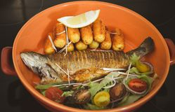 Fried trout in bowl stock image