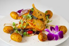 Fried trout. Fish dish - fried trout with potatoes and vegetables stock photo