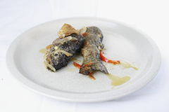 Fried trout with onion and pepper. On a dish stock photography
