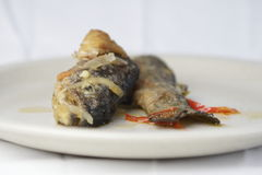 Fried trout with onion and pepper. On a dish stock images