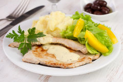 Fried turkey with mashed potato Royalty Free Stock Photos