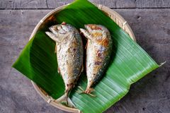Fried two bodied mackerel fishes stock photo