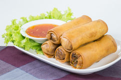 Fried Vegetable egg roll, spring roll Stock Photography