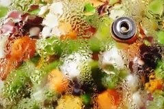 Fried vegetables. Stock Images