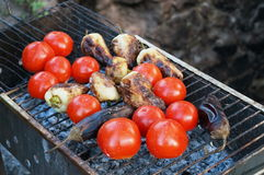 Fried vegetables on the grill tomatoes pepper eggplant royalty free stock photos