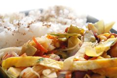 Fried Vegetables With Rice Royalty Free Stock Photography