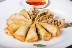 Fried vietnamese spring rolls Stock Images
