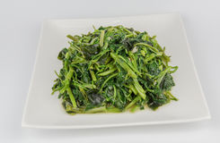 Fried Water spinach royalty free stock photos