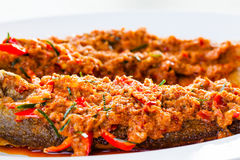 Fried whisker sheat fish with chili sauce. Close-up fried whisker sheat fish with chili sauce, or chili sauce on fried fish on white dish, Thai food Stock Images