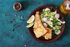 Fried white fish fillet and cucumber and radish salad. Royalty Free Stock Image