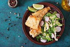 Fried white fish fillet and cucumber and radish salad. Royalty Free Stock Photo