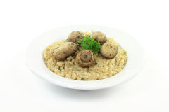 Fried white mushrooms on rice. Stock Photography