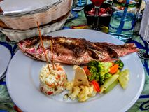 Fried whole fish with rice and vegetables on plate at lunch table setting Stock Photography