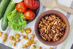 Fried chanterelles with onion in rustic bowl and plate with fresh vegetables for salad on background. Fried wild forest mushrooms chanterelles with onion in stock photography