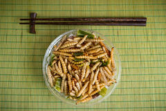 Fried worm bamboo Stock Image