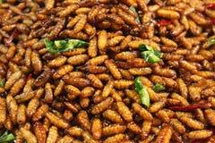 Fried Worms profond croustillant - casse-croûte asiatique populaire image libre de droits