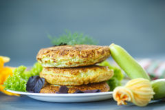 Fried zucchini fritters Stock Photography